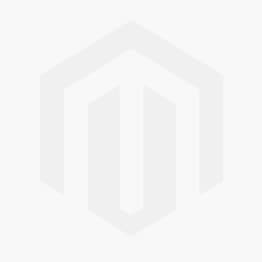 Alcohol Swabs (100)